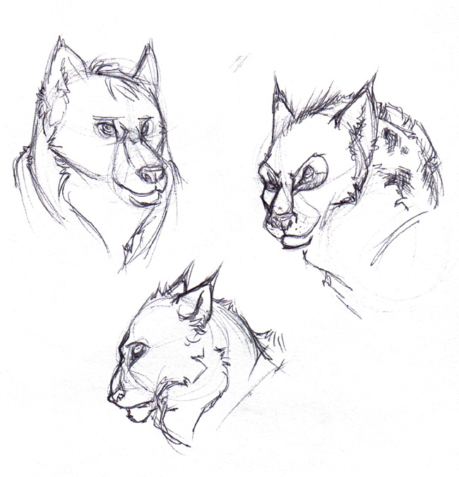 Some wolves.
